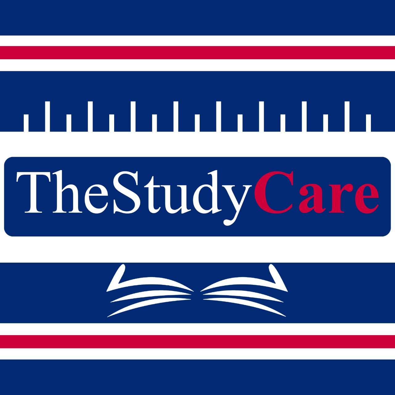 Introducing our partner Company - TheStudyCare
